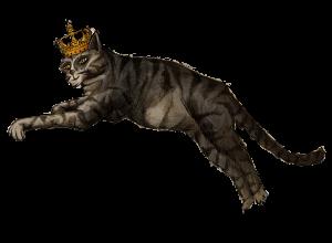 Katze_2+.png