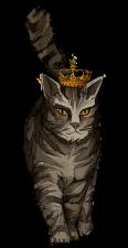 Katze_4+.png