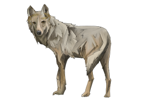 Wolf2+