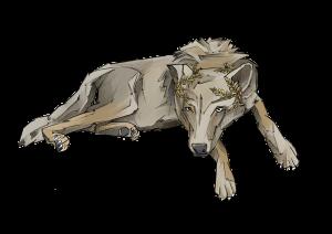 Wolf3+